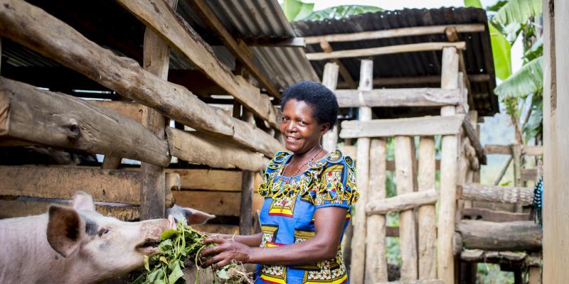 Beatilde with her pigs in Rwanda