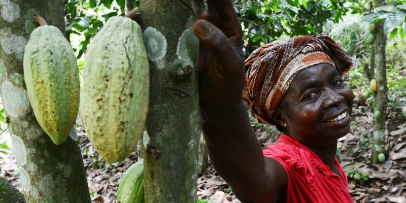 Woman cocoa farmer with cocoa pods in Ghana